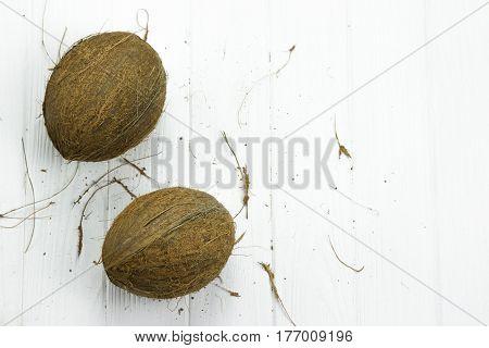 two coconut pulp fresh tropical brown white organic coconut milk