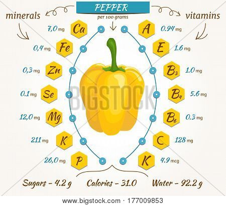 Vector infographics for content of vitamins and minerals in pepper. Illustration about nutrients, vegetables, health food, diet. Flat style.