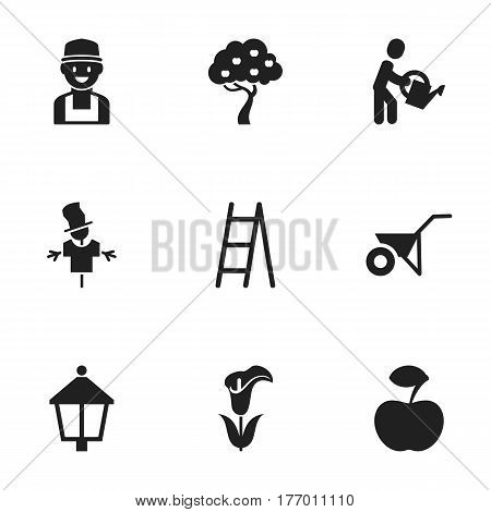 Set Of 9 Editable Garden Icons. Includes Symbols Such As Streetlight, Lily, Stairway And More. Can Be Used For Web, Mobile, UI And Infographic Design.