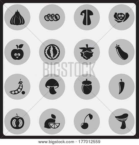 Set Of 16 Editable Cookware Icons. Includes Symbols Such As Cep, Laughing Cabbage, Aubergine And More. Can Be Used For Web, Mobile, UI And Infographic Design.