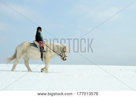 cute girl on a horse on a field with snow in the winter