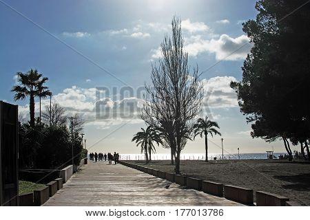 Mallorca Spring Backlight