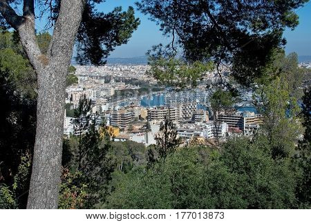Palma View With El Terreno Buildings