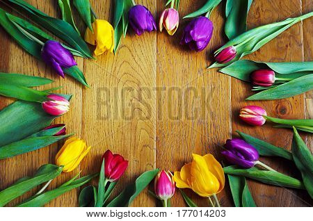 Multicoloured tulips forming a circle with a blank space in the middle on wooden surface.