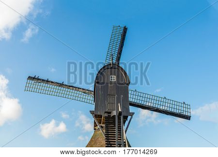 Closeup of the top of an old wooden hollow post mill in the Netherlands against a bright blue sky on a sunny day in the autumn season. On the vanes birds are resting.