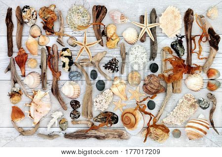 Abstract seaside art with driftwood, seashells, rocks and seaweed on distressed white wood background.