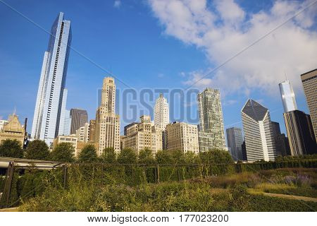 Autumn in Chicago - Gold Coast buildings