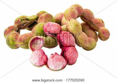 Pods of 'Manila Tamarind' (Pithecellobium Dulce) on white background and clipping path