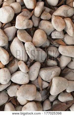 Pebble stones for background. Abstract background and texture with white pebbles. Stones texture and background. Garden decoration. Abstract texture and background for designers. Macro view of white pebbles.