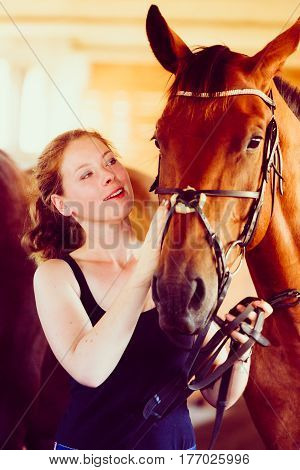 Animal horsemanship concept. Woman hugging brown horse in stable. Natural sunlight