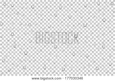 Vector realistic water drops on transparent background. Rain drops without shadows for transparent surface. Many forms and sizes.