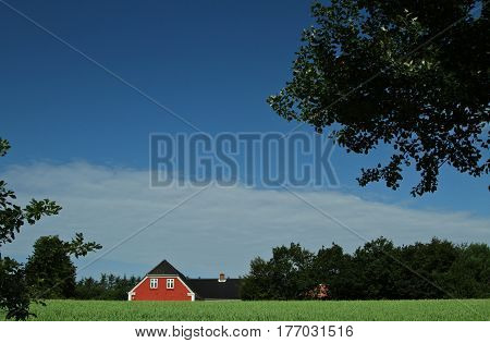Red House In Danish Landscapes In The Summer