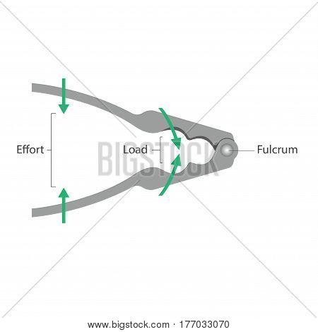 Simple machines: Lever - Nutcracker - vector illustration