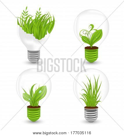 Illustration Set of Light Bulbs with Plant and Leaves Growing. Green Eco Energy Concept, Recycling Waste - Vector