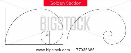 Illustration of double golden spiral (section, ratio, proportion), isolated on white background