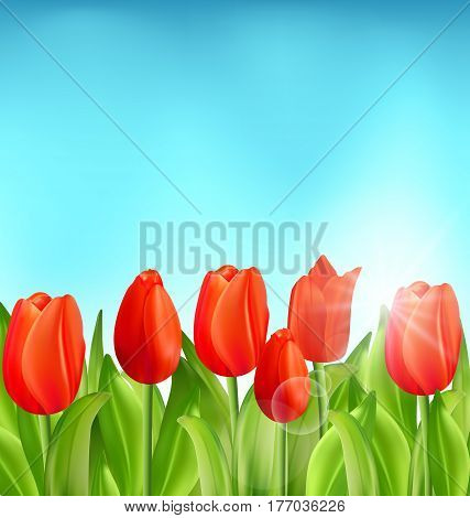 Illustration Nature Floral Background with Tulips Flowers and Blue Sky, Springtime, Summertime, Environment, Beautiful Landscape - Vector