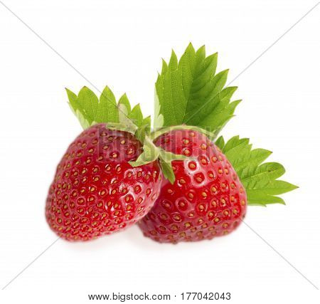 two strawberries with leaves isolated on white background. Ripe strawberries close-up. Background berry. Sweet and juicy berry with copy space for text.