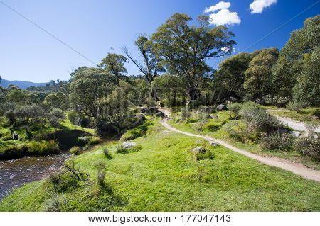 The walking trails along the Thredbo River at Lake Crackenback, New South Wales, Australia
