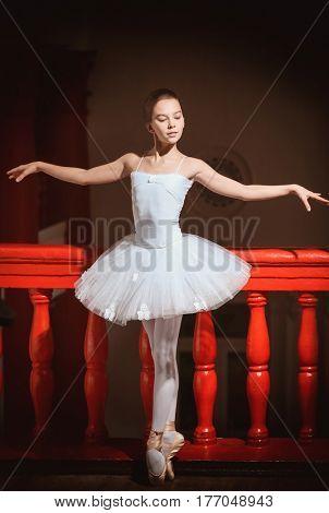 Young beautiful ballerina beside railing on dark background