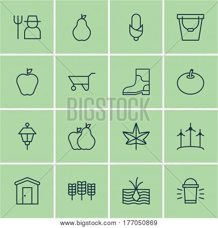 Set Of 16 Planting Icons. Includes Maize, Radish, Growing Plant And Other Symbols. Beautiful Design Elements.