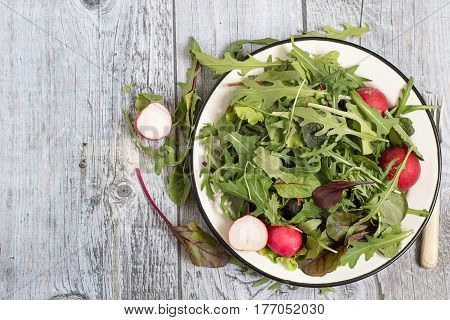 Spring green salad with herbs such as chard, lettuce, beet leaves and a fresh radish on a plate on a gray wooden table.