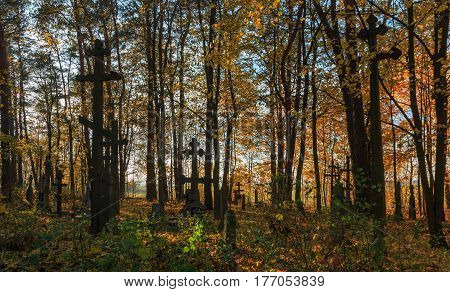 Nowoberezowo, Poland-OCTOBER 312015: Old cemetary nearby Nowoberezowo village in autumnal sunset light