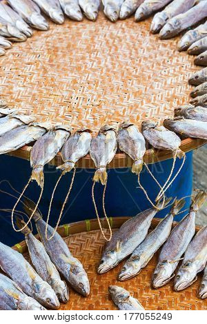 Fishes Put Down To Dry In Tai O, Hongkong