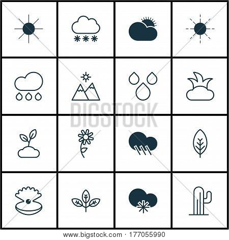 Set Of 16 Ecology Icons. Includes Snowstorm, Bush, Sunflower And Other Symbols. Beautiful Design Elements.