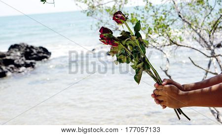 Red roses and sweet love on the beach