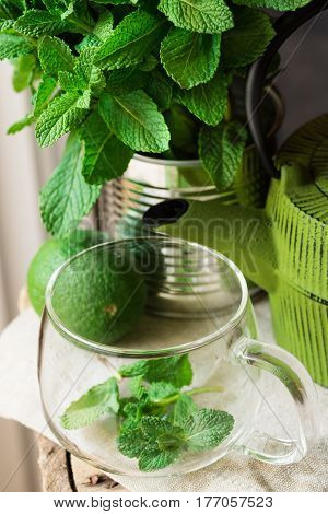 Fresh mint bunch in tin can glass cup pot lime on linen cloth preparing to brew herbal tea daylight top view