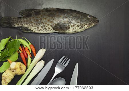 Grouper fish on dark black backgroundspices and vegetables cooking concept