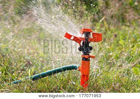 sprinkler spraying water over grass for watering garden