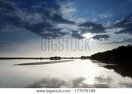 The calm tropical beach and mangrove forest
