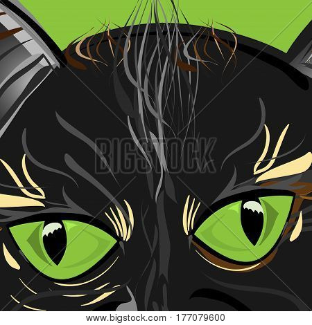 vector illustration of a close-up cat face with big shiny green eyes