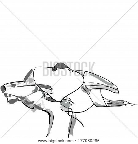 vector illustration of a couple hand drawn hounds schematical on a white background