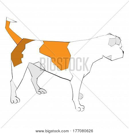 isolated vector illustration of an american bulldog portrait