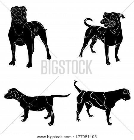 isolated vector illustration of a set of outlined silhouettes of american bulldogs