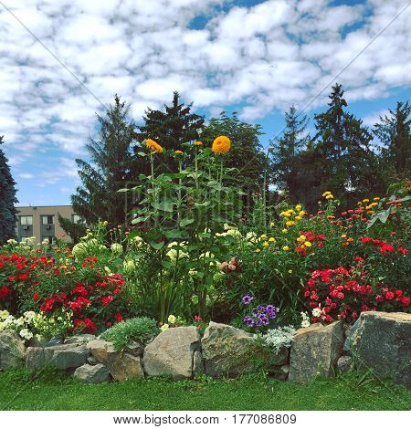 Colorful blooming flowers with large rocks outlining garden and lush green grass in foreground. Trees and building in background with white clouds and blue sky.