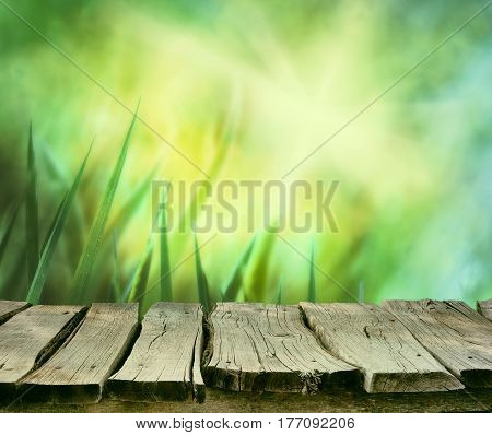 Spring background. Spring grass. Blur background. Summer nature. Bokeh blurred background.Wooden table. Wood planksGrass with copyspace. Floral background .Nature bokeh
