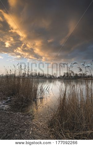 Stunning Colorful Winter Sunrise Over Reeds On Lake In Cotswolds In England