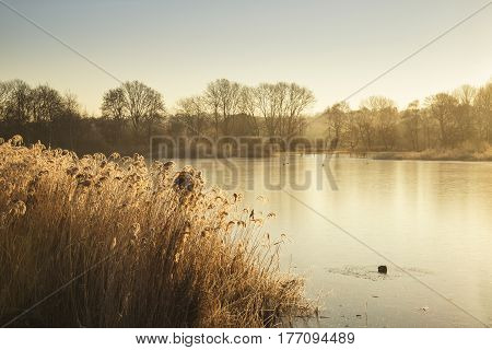 Beautiful Vibrant English Countryside Lake Image With Frost And Frozen Lake In Winter At Sunrise