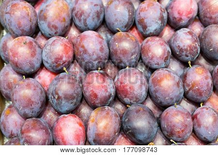 Background of fresh ripe plums arranged in neat rows