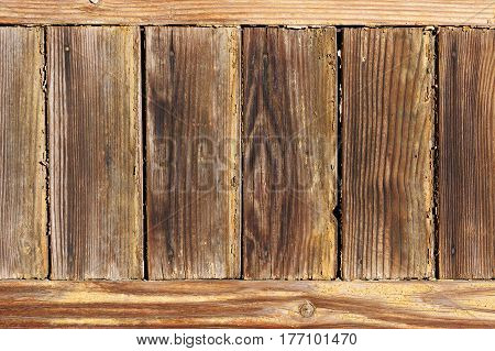 Unpainted weathered grunge wooden boards. Natural texture.