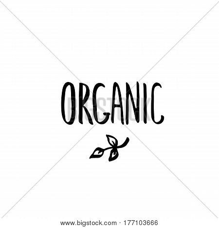 Hand drawn brush lettering. Organic, template isolated on white background. Heading for restaurant menu.