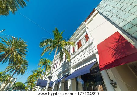 Palm trees in Rodeo Drive Beverly Hills
