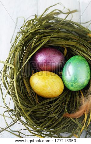 green nest with painted eggs, Easter background. Top view