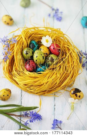 yellow nest with painted eggs, Easter background