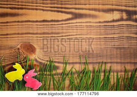 Happy easter. Easter background. Easter cookies. Gingerbread in the form of colored Easter rabbits on green grass on a background of brown wooden desk. Free space