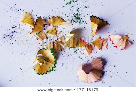 Pencil shavings color bright on the whight background.
