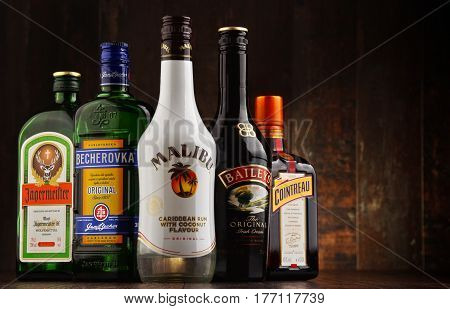 POZNAN POLAND - MAR 16 2016: Historical descendants of herbal medicines liqueurs are drinks made from distilled spirit flavored with fruit cream herbs spices flowers or nuts and added sugar